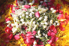 Popped rice and flowers in utensil. Popped rice and flowers in utensil for the worship Royalty Free Stock Photo