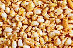 Popped wheat grains Stock Photography