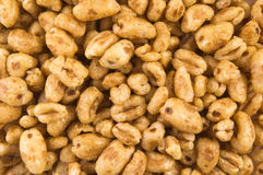 Popped wheat grains. Gluten-free, high protein grain cereal Stock Photography