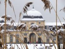 Poppelsdorfer Schloss в Бонне Стоковое Изображение RF