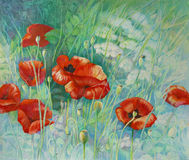 Poppies. Color pencil drawing of field of poppies Royalty Free Stock Photos