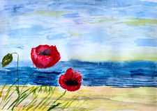 Poppies against sea Stock Image