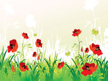 Poppies background Royalty Free Stock Image