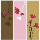 Poppies banners. Set of banners with poppies Stock Photos