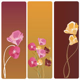 Poppies banners. Set of banners with poppies Stock Photo