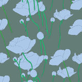Poppies blue pattern Stock Images