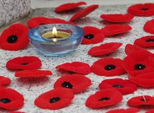 Poppies And Candle At Remembrance Day Service Stock Photos