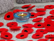 Poppies And Candle At Remembrance Day Service Stock Image