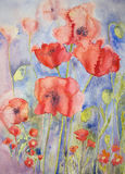 Poppies in cheerful bright colours. The dabbing technique gives a soft focus effect due to the altered surface roughness of the paper. GVP1525 vector illustration