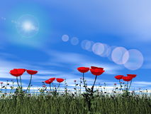 Poppies by day - 3D render Stock Images