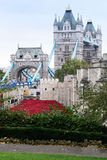 Poppies display at the Tower of London. Tower Bridge and the Tower of London surrounded by ceramic red poppies in colour. These poppies have been laid out on the royalty free stock images