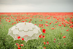 Poppies field with umbrella. Artistic interpretation Stock Photography