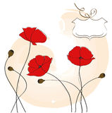 Poppies floral background Royalty Free Stock Photography