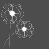 Poppies Flower Background Vector Illustration Stock Images