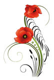 Poppies, flowers, calligraphy Stock Photography