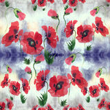 Poppies - flowers, leaves and buds. Drawing on rice paper. Seamless pattern. Stock Photography