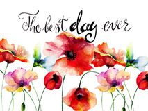 Poppies flowers with title the best day ever Royalty Free Stock Images