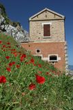 Poppies in front of a house Stock Images
