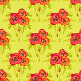 Poppies on green background. Seamless pattern. Hand drawn line Stock Photos