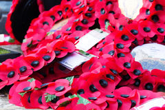 Poppies left at a memorial during Rememberance Day Royalty Free Stock Photo