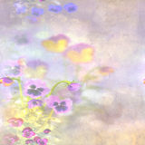 Poppies on a painted background stock images
