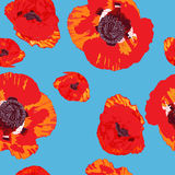 Poppies pattern Royalty Free Stock Images
