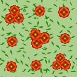 Poppies pattern. On a light background Stock Photography