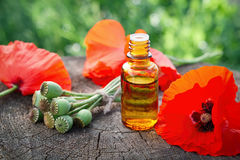 Poppies, poppy flower heads and bottle of infusion. Stock Images