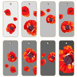 Poppies price tags Stock Photography