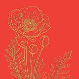 Poppies on a red background Stock Photography