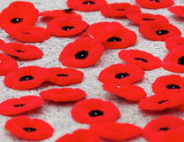Poppies At Remembrance Day Service. Poppies on monument after Remembrance Day Service Stock Photography