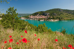 Poppies at the Saint Croix lake Royalty Free Stock Images