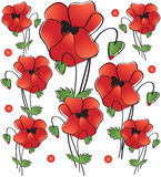 Poppies. Seamless background. Royalty Free Stock Image