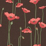 Poppies seamless background Royalty Free Stock Image