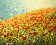 Poppies at the Seashore. An oil painting on canvas of a tranquil scene at the sea coast. High above the water surface a carpet full of red poppies and white Royalty Free Stock Images