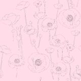 Poppies sketch pattern Stock Photography