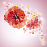 Poppies. Summer flowers invitation Stock Images