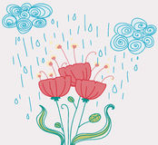 Poppies under the rain romantic card Royalty Free Stock Photos