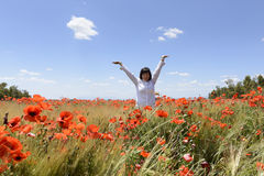 Poppies in wheat stock photography