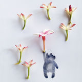 Poppins Beary стоковые фото