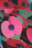 Poppy. Image of red poppies commemorating world war Stock Photo