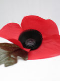 Poppy. Red poppy appeal Stock Photography