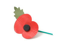 Poppy appeal. On a white bg Stock Photography
