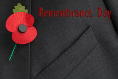 Poppy Appeal for Remembrance / Poppy Day. Poppy on jacket lapel for Poppy Day with red text reading, 'Remembrance Day royalty free stock photos
