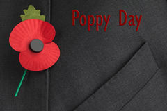 Poppy Appeal for Remembrance / Poppy Day. Poppy on jacket lapel for Remembrance Day, with red text reading 'Poppy Day stock photography
