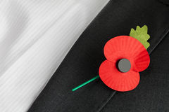 Poppy Appeal for Remembrance / Poppy Day. Poppy on jacket lapel for Poppy Day and Remembrance Day, with text space royalty free stock photography