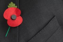 Poppy Appeal voor Herinnering/Poppy Day. Stock Foto