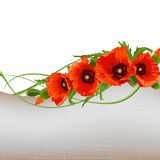 Poppy background Stock Image