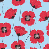 Poppy background vector illustration