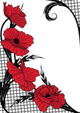 Poppy background Royalty Free Stock Photos